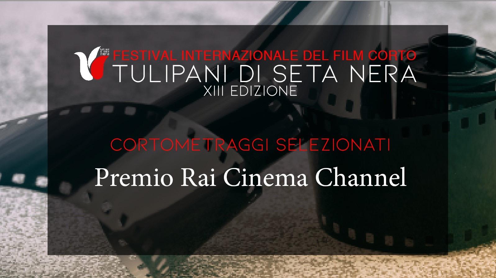 """XIII Tulipani di seta nera: i 50 corti che concorrono per il Premio """"Sorriso RAI Cinema Channel"""""""